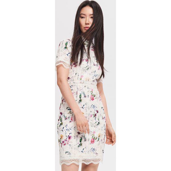 19885c91 Koronkowa sukienka w kwiaty - Wielobarwn