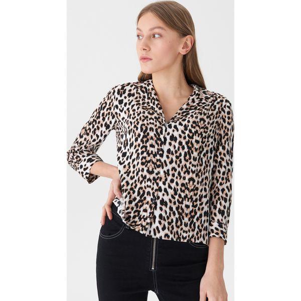 3993445bdb Koszula w panterkę - Beżowy - Koszule damskie marki House. W ...