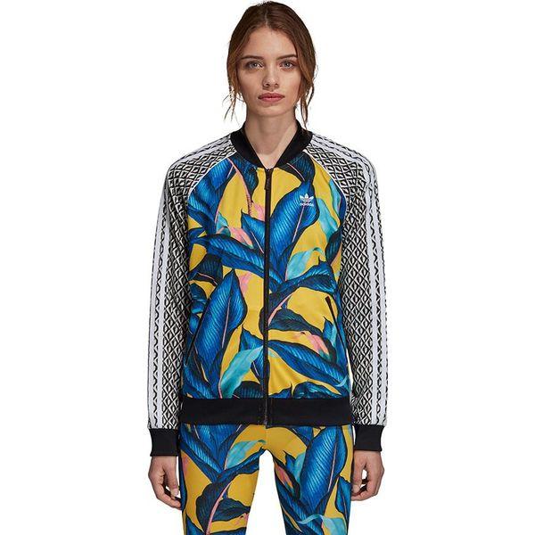 25aeda6bbd216 Bluzy sportowe damskie marki Adidas - Kolekcja lato 2019 - Sklep Super  Express