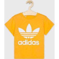 12e1ea7844c75c Koszulki dziewczęce adidas Originals - Kolekcja lato 2019 - Sklep ...
