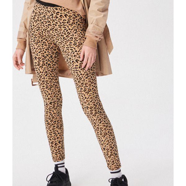 92a7bb3079de3 Spodnie i legginsy damskie - Kolekcja wiosna 2019 - Sklep Super Express