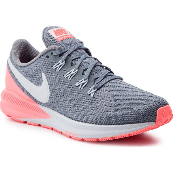 Buty NIKE Air Zoom Structure 22 AA1640 005 Cool GreyPure Platinum